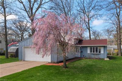 Avon Lake Single Family Home Active Under Contract: 142 Herrmann Drive