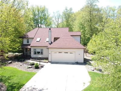 Broadview Heights Single Family Home For Sale: 8350 Chestnut Blvd