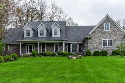 Concord Single Family Home For Sale: 6209 Painesville Ravenna Rd
