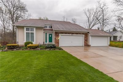 Macedonia Single Family Home Active Under Contract: 577 Ledge Road
