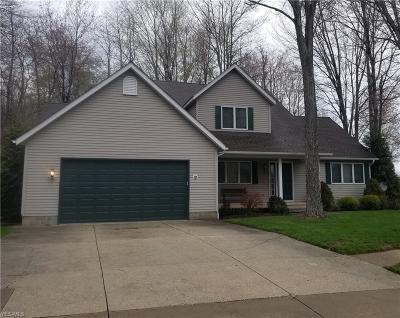 Ashtabula Single Family Home For Sale: 4371 Stonegate Drive