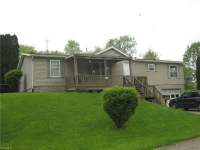 Zanesville Single Family Home For Sale: 1327 Henry