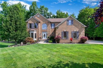 Macedonia Single Family Home For Sale: 1019 Bull Creek Lane