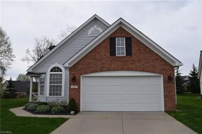 North Royalton Single Family Home Contingent: 10521 West Ravine View Ct
