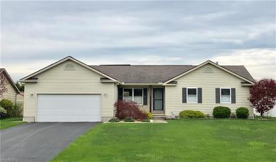 Mineral Ridge Single Family Home For Sale: 1225 Mulberry Run