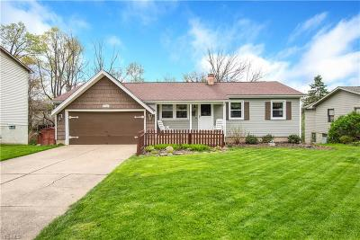 Youngstown Single Family Home For Sale: 3102 Straley Lane
