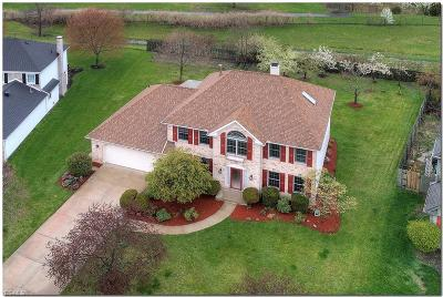 Single Family Home For Sale: 28816 Woodmill Dr