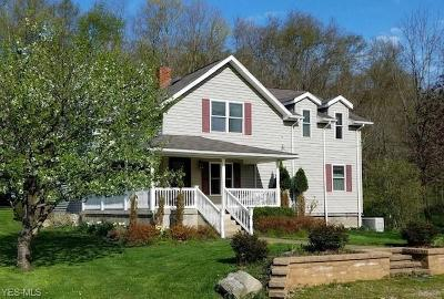 Guernsey County Single Family Home For Sale: 64065 Rick Road