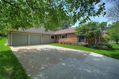 Aurora Single Family Home For Sale: 883 South Parkview Dr
