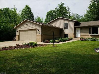 Ashland County Single Family Home For Sale: 4225 Majorna Dr