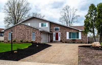 Strongsville Single Family Home Contingent: 13326 Hollo Oval