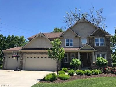 Independence Single Family Home For Sale: 7045 Twin Creeks Court