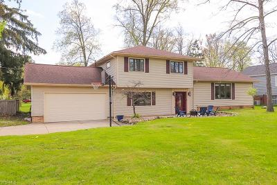 Strongsville Single Family Home Contingent: 18651 Main St