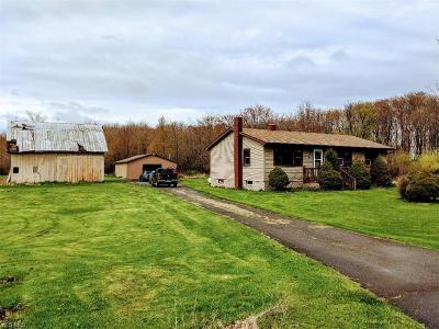 Jefferson Single Family Home For Sale: 1501 State Route 167