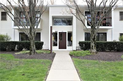 Westlake Condo/Townhouse For Sale: 2917 North Bay Dr #M13