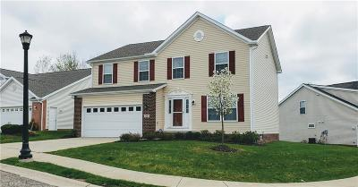 Macedonia Single Family Home Contingent: 7683 Willow Ln
