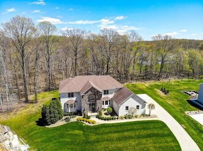 Youngstown Single Family Home For Sale: 3660 Polo Boulevard