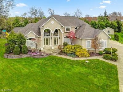 Canfield Single Family Home For Sale: 64 Cherry Hill Court