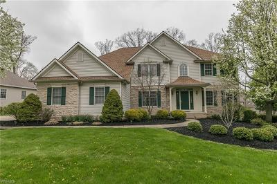 North Royalton Single Family Home For Sale: 5380 Riverview Dr