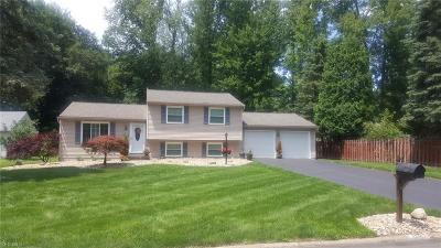 Warren Single Family Home For Sale: 100 Pegotty Court