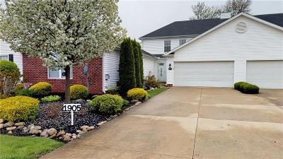 Painesville OH Condo/Townhouse For Sale: $160,000