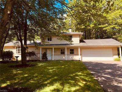North Royalton Single Family Home For Sale: 16830 State Rd