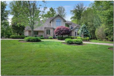 Solon Single Family Home For Sale: 6151 Penfield Lane