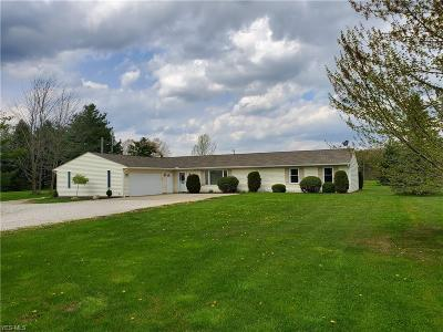 Litchfield Single Family Home For Sale: 9089 West Smith Rd