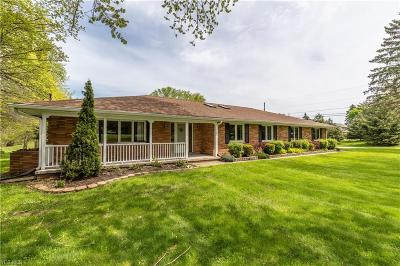 Willoughby Hills Single Family Home For Sale: 36001 Maplegrove Road