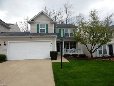 Brunswick Single Family Home Contingent: 92 Crystal Ct