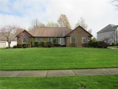 North Royalton Single Family Home For Sale: 19393 Rye Gate Dr