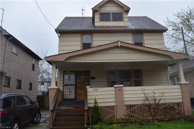 Cleveland Single Family Home For Sale: 13200 Horner Avenue
