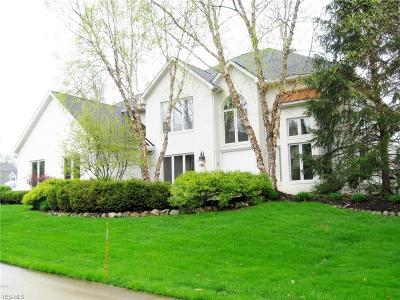 Medina Single Family Home For Sale: 3818 Weymouth Woods Dr