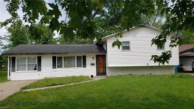 Lorain County Single Family Home For Sale: 3901 Caferro Ave