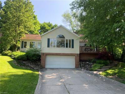 Chagrin Falls Single Family Home For Sale: 50 Lyndale Dr