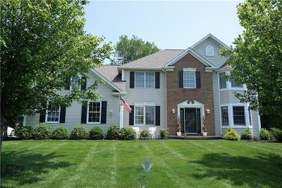 Broadview Heights Single Family Home For Sale: 8835 Chaucer Blvd
