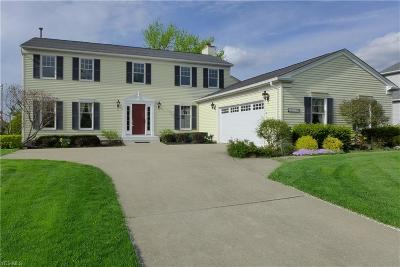 Brunswick Single Family Home For Sale: 3033 Portsmouth Dr