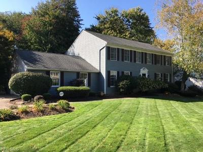 Concord Single Family Home Contingent: 7190 Sowul Dr