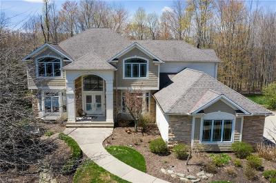 Solon Single Family Home Contingent: 7376 Stockwood Dr