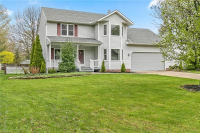 Painesville OH Single Family Home Contingent: $199,900
