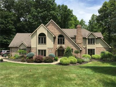 Brecksville Single Family Home For Sale: 8477 Timber Trail