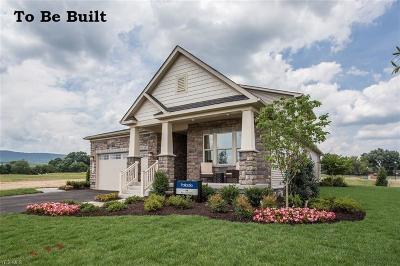 Aurora Single Family Home For Sale: 420 Lakeland Way