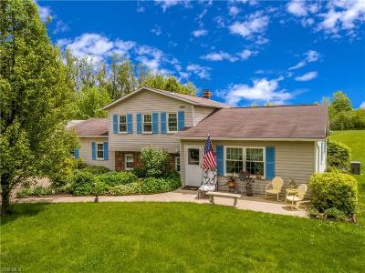 Medina County Single Family Home For Sale: 7379 Bear Swamp Road