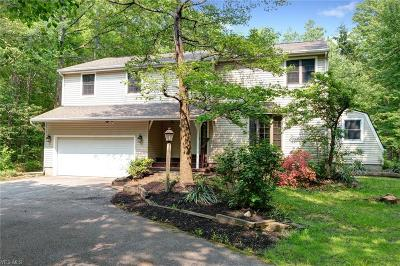 Concord Single Family Home For Sale: 8169 Ravenna Road