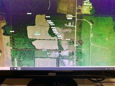 Lorain County Residential Lots & Land For Sale: 12820 Avon Belden Rd