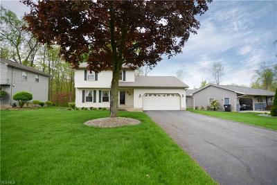 Canfield Single Family Home Active Under Contract: 4889 Warwick Drive
