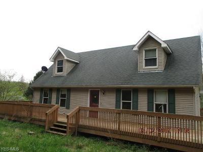 Licking County Single Family Home For Sale: 10222 Stickle Rd