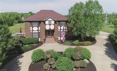 Litchfield Single Family Home For Sale: 3800 Vandemark Rd