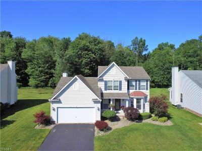 Girard Single Family Home For Sale: 6172 Klines Drive