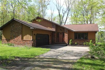 Medina County Single Family Home For Sale: 2055 Ledge Rd
